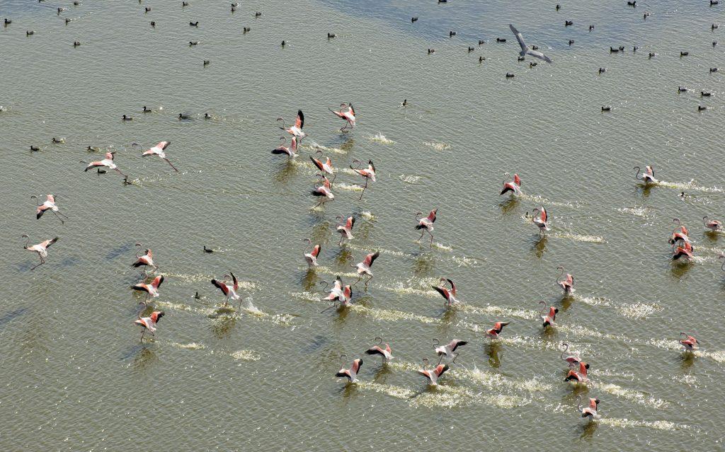 Vendicari Nature Reserve