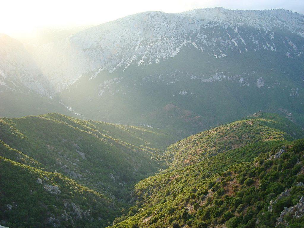 hills in the sun