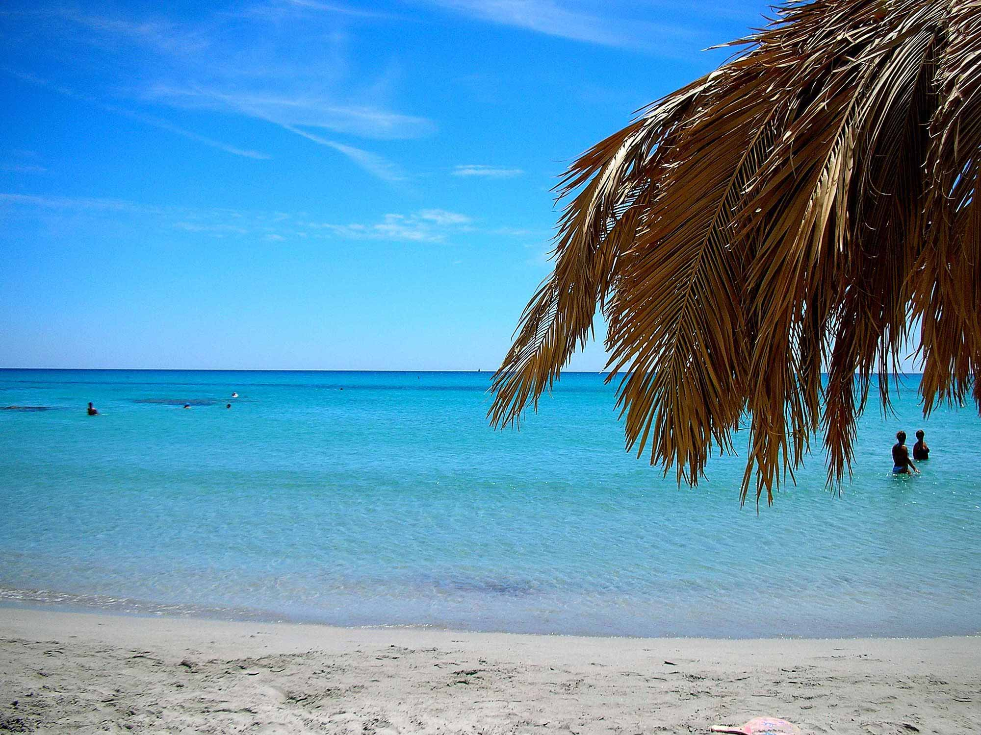 Beach at Residence Fenicia
