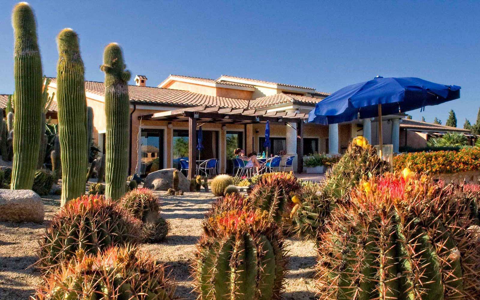 Terrace at Lantana Resort