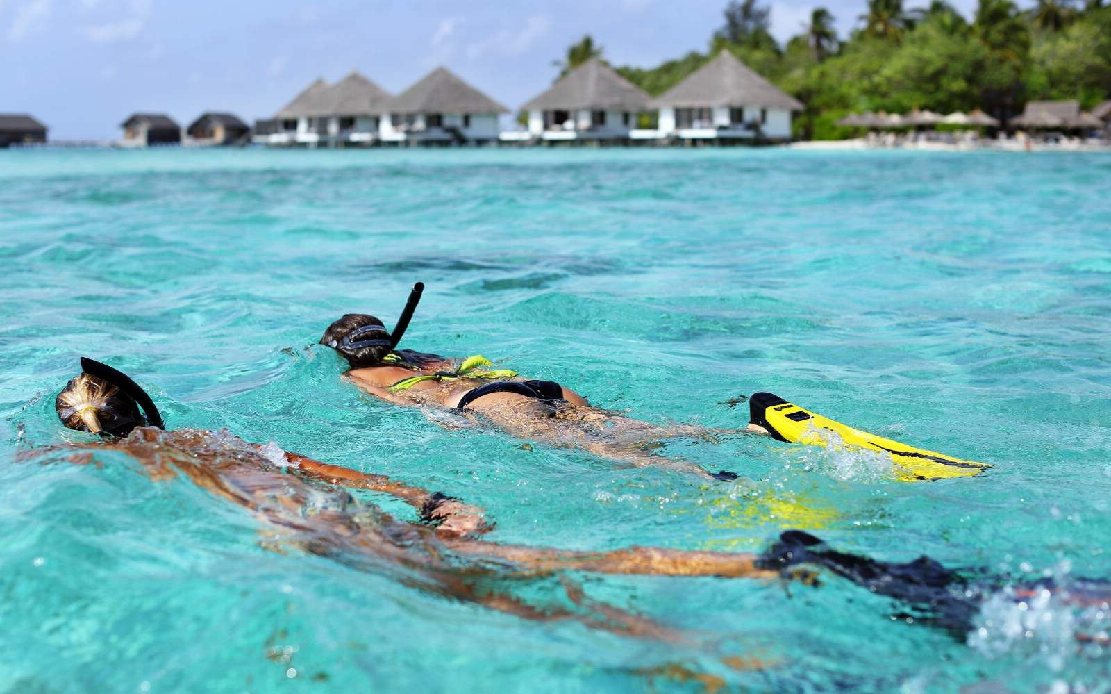 Snorkeling at Gangehi Resort