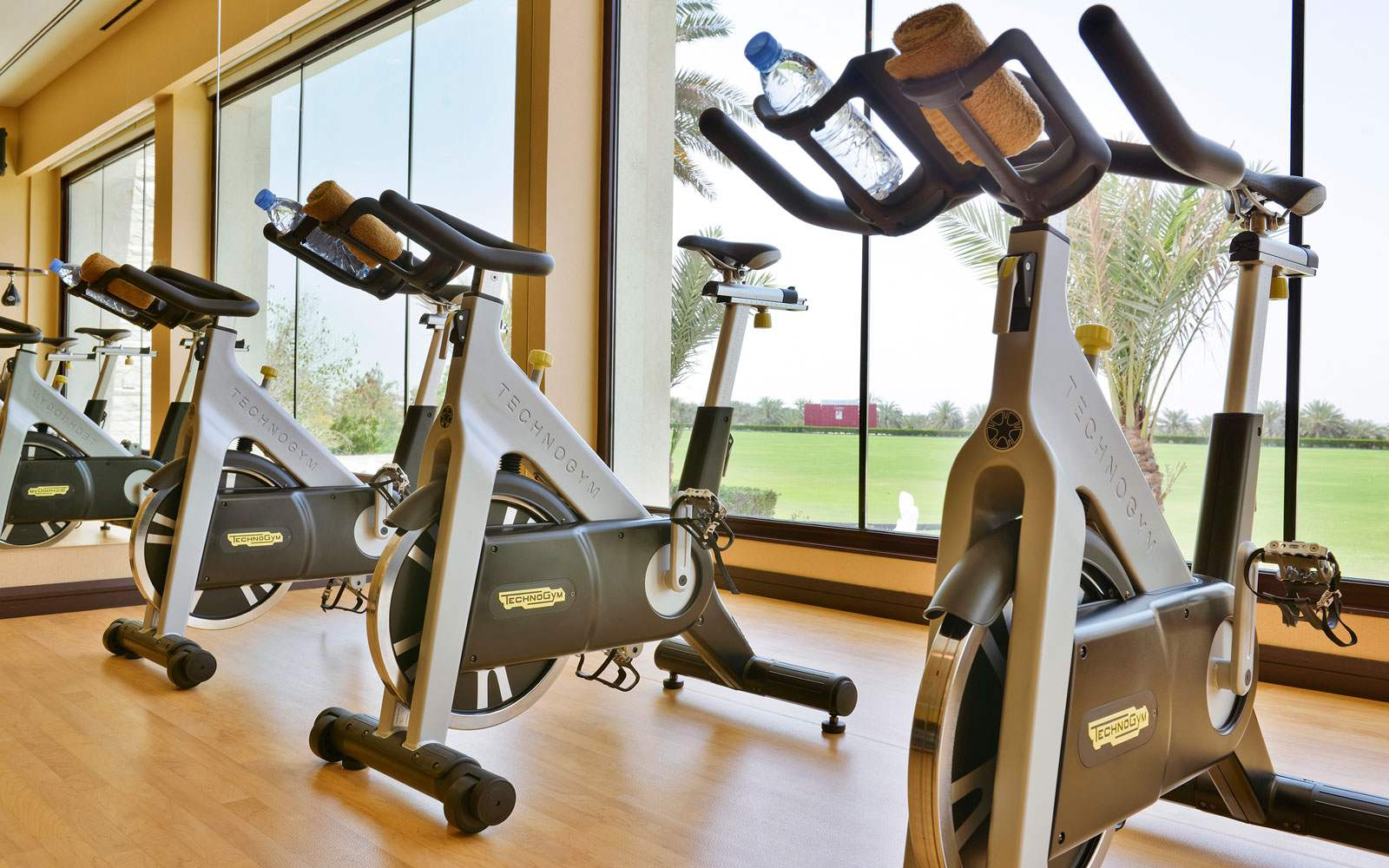 Melia Desert Palm Fitness Centre