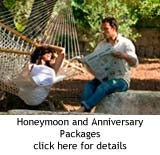 Honeymoon and Anniversaries